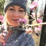 Ferskentrær – til nytte og glede!