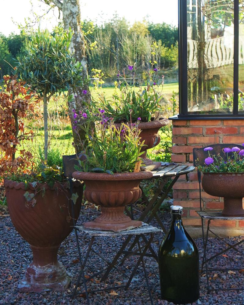Levende potter og drivhus