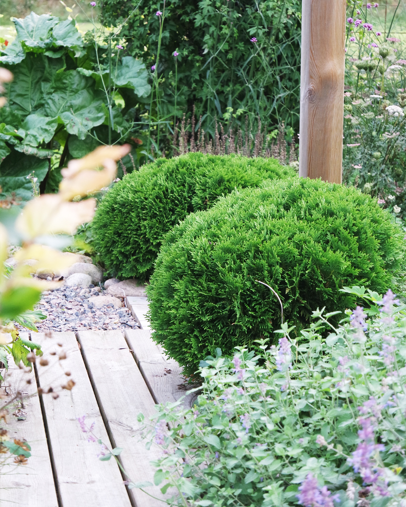 Den store planteuken – første uken i september.
